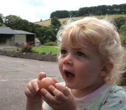 Love North Devon Cottage Holidays Self Catering in Devon