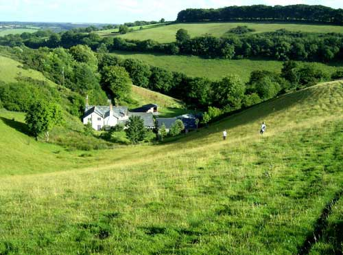 Devon Self Catering